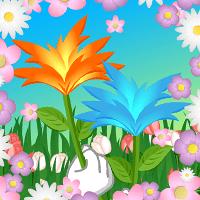 Fleur Boule de Feu nouvellement découverte !