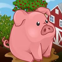 L'année du Cochon pour le nouvel an chinois !