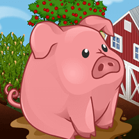 Go Hog Wild for Pigs!